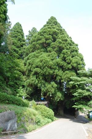 籾山神社3