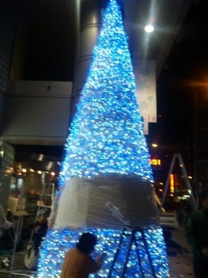 s-09-11-04 クリスマスツリー夜