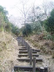 果てしなく続く階段…