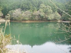 池、発見!!
