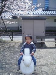 ウサギの乗り物♪