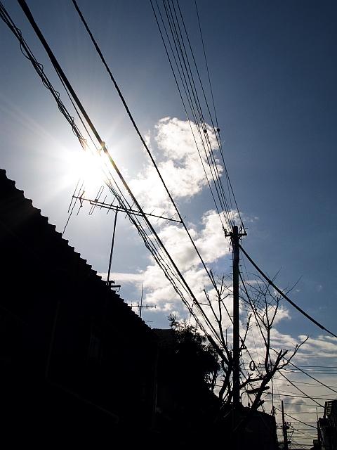 20090307.jpg