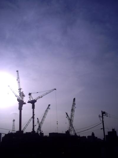 20090419.jpg