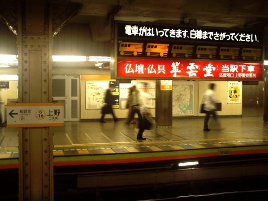 20090610.jpg