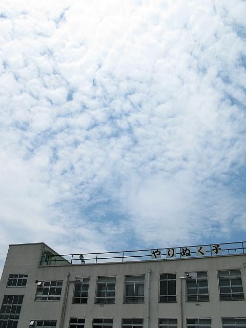 20090805.jpg