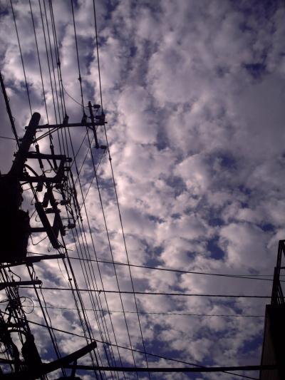 20090821.jpg