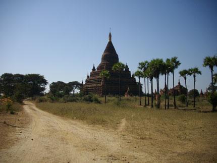 ミャンマー50