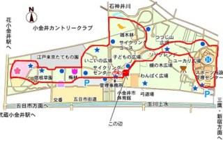 5.1km_course_koganei.jpg