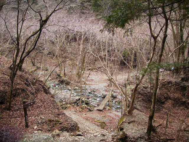 木橋318