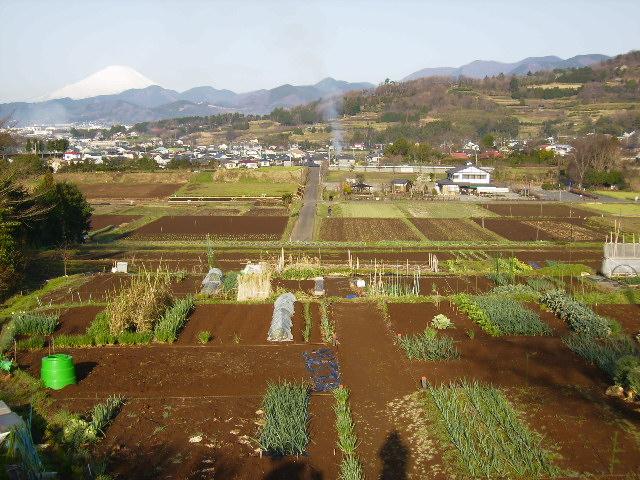 白富士と田原盆地237