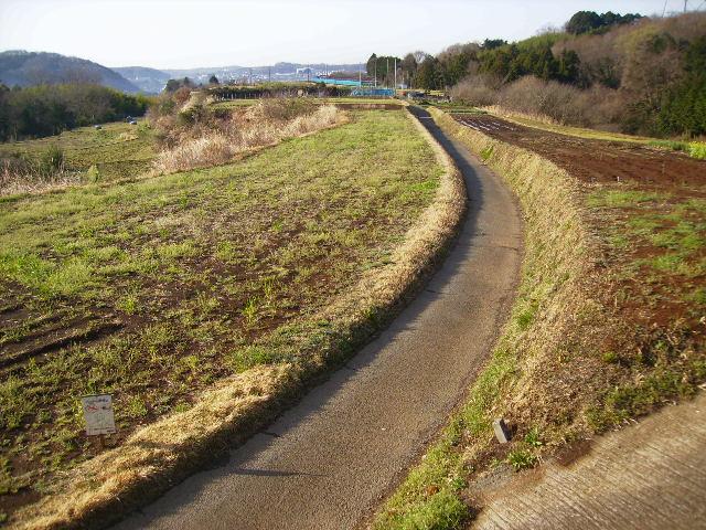 初春の坂本古道57