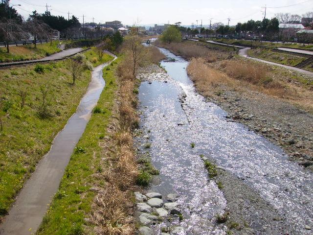 春の水無川52