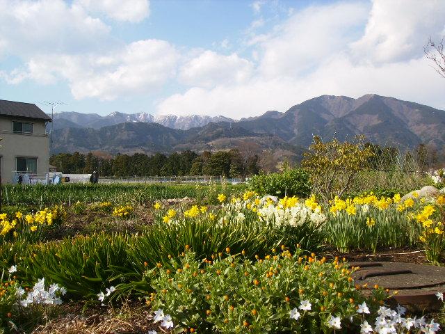 春雪の丹沢72