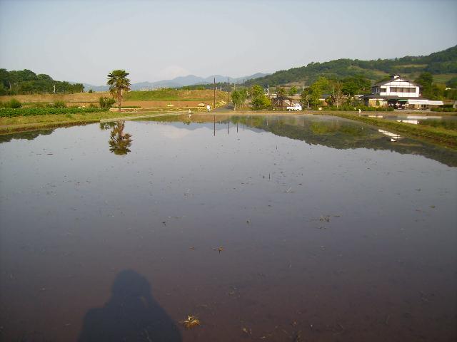水面の富士23