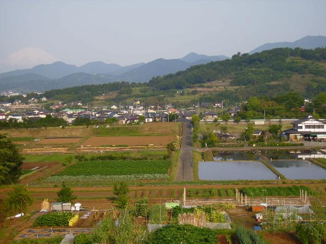 田原盆地28
