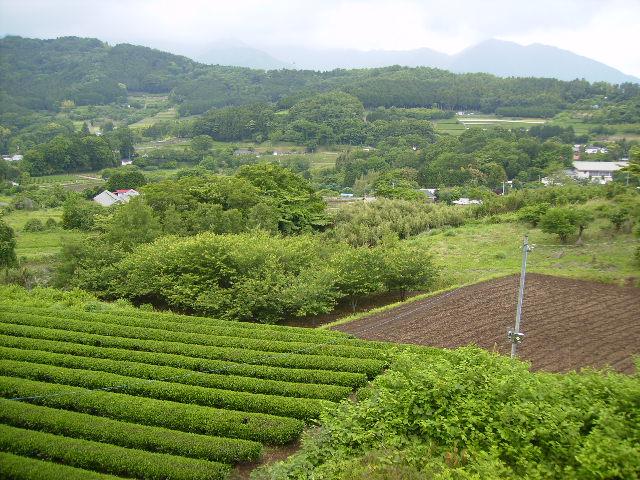 柳川盆地13