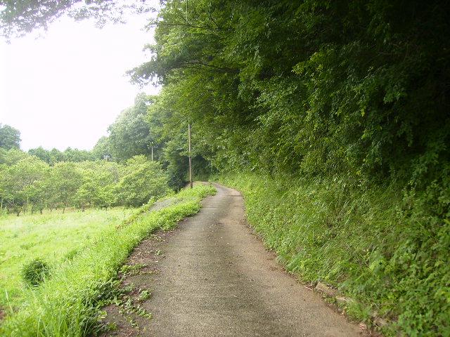 夏の農道87