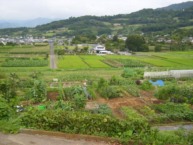 田原盆地48