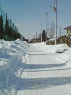 豪雪地帯1