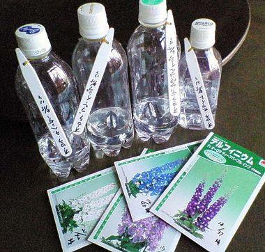 Gオーロラ冷蔵庫蒔き2008