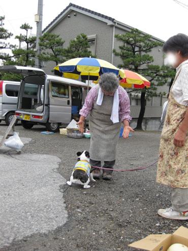 asaichi_20090706014654.jpg
