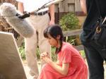 gallery_s_image7-rinakoike.jpg