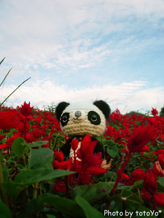 花とパンダ