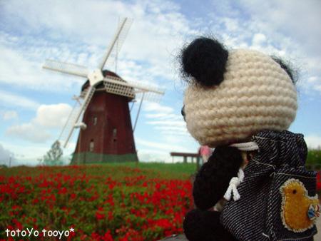 風車とパンダ