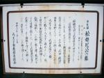 松姫尼公の墓01