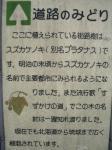 鎌倉街道のみどり(2)01