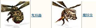 6月5日中華共同その3(蟲)
