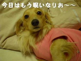 眠いなりお~