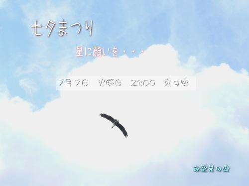 2009 7  7 七夕まつり