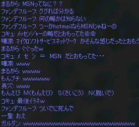 MSNとは…