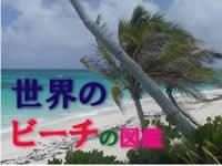 beach-zukan.jpg