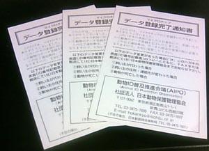 TS390027.jpg