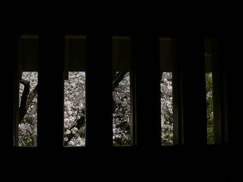 松本城の武者窓