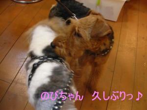 のびちゃん&リフ