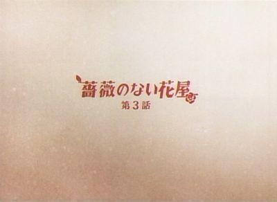 bara_20080128_001.jpg