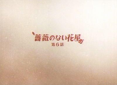 bara_20080218_001.jpg