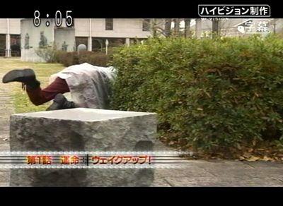 kiba_20080127_001.jpg