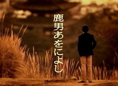 shika_20080117_001.jpg