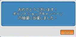 Maple1571@.jpg