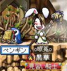 Maple090809_113108.jpg
