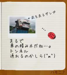 hamonina*truck