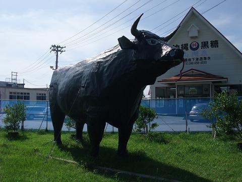 沖縄ハム総合食品株式会社 牛