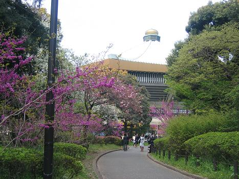 日本武道館 002