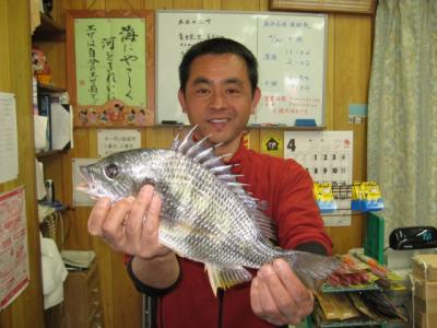 20090430toyoda1.jpg