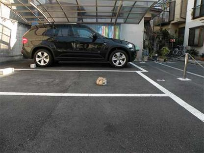 090403駐車場