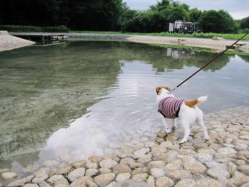 9長岡公園502